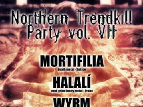 NORTHERN TRENDKILL PARTY VOL. VII - info